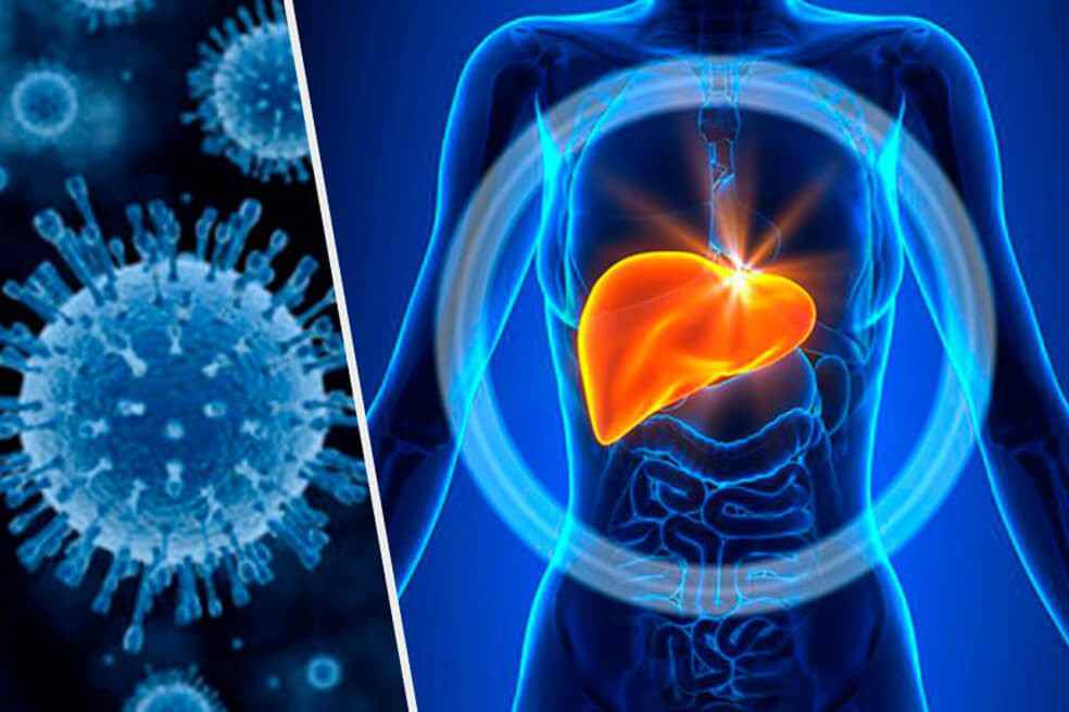 Evitar la hepatitis equivale a prevenir el cáncer de hígado